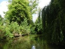 Descente de l Avre Castel - Boves 016