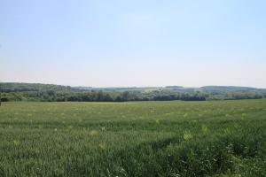 la vallée de l'Avre depuis le GR 123