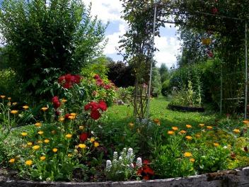 Hortillons_14_juillet_2009 043