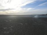 Baie De Somme Juillet 2012 057