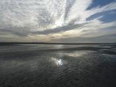 Baie De Somme Juillet 2012 058