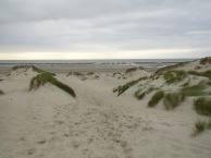 Baie De Somme Juillet 2012 105