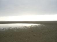 Baie De Somme Juillet 2012 120