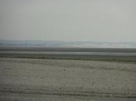 Baie De Somme Juillet 2012 134