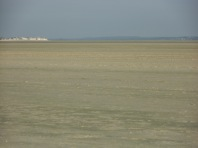 Baie De Somme Juillet 2012 151
