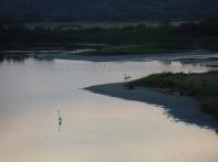 Baie De Somme Juillet 2012 198