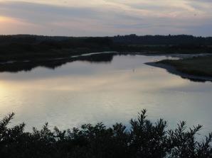 Baie De Somme Juillet 2012 200