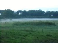 Baie De Somme Juillet 2012 220