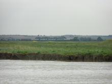 Baie De Somme Juillet 2012 273