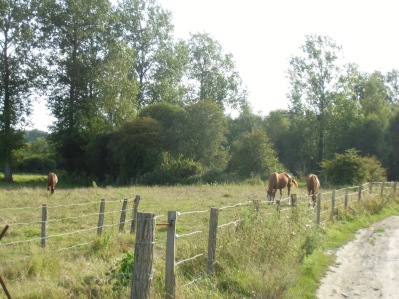 Belloy-sur-Somme 083