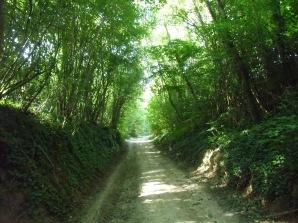 Le Mont Woignas CANAPLES 7 km 034