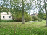 Berny-sur---NoyeVallée Grand-Mère _ Bois de Berny 016