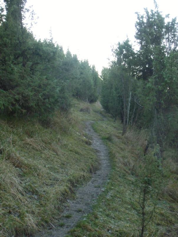 Grattepanche_La_Montagne_De_GresDecembre2012 037