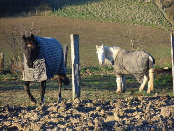 Grattepanche_La_Montagne_De_GresDecembre2012 038