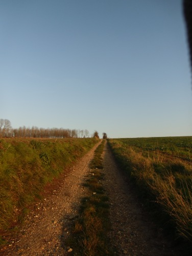 Saint-Leger-Les-DomartRando_Larbre-De-La-Croix6km 019