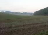 Saint-Leger-Les-DomartRando_Larbre-De-La-Croix6km 042