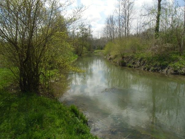 Rando-  Le bois du roi - 9km Remiencourt 009