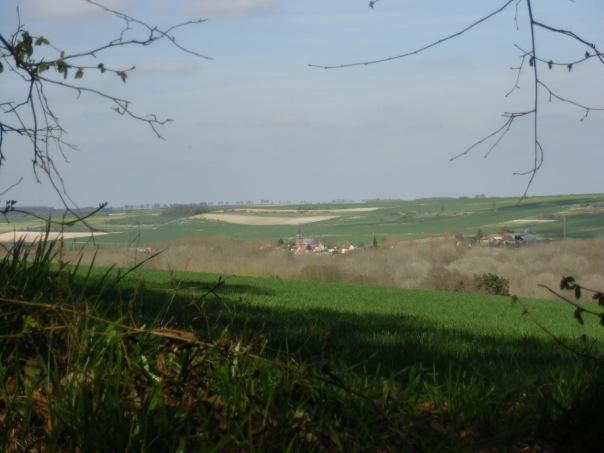 Rando-  Le bois du roi - 9km Remiencourt 037